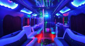 18 person party bus rental