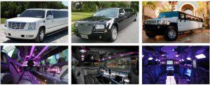 Wedding Transportation Party Bus Rental Orlando